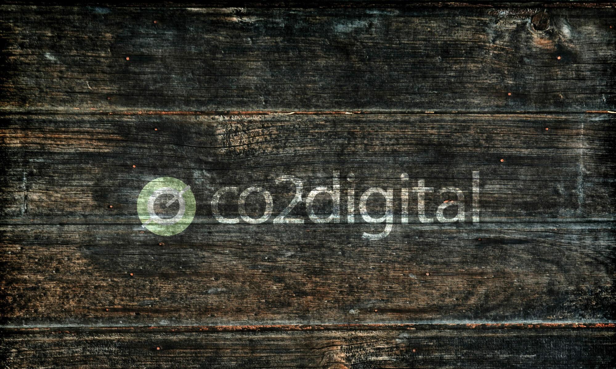 co2digital Business Website Design